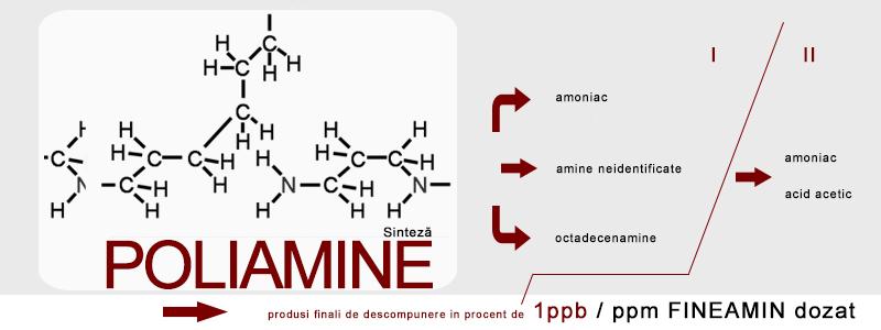sinteza poliamine